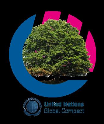 Principios del Pacto Mundial de la ONU